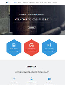 BIZ – One Page Parallax HTML5 Template