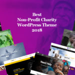 Best Non-Profit Charity WordPress Theme