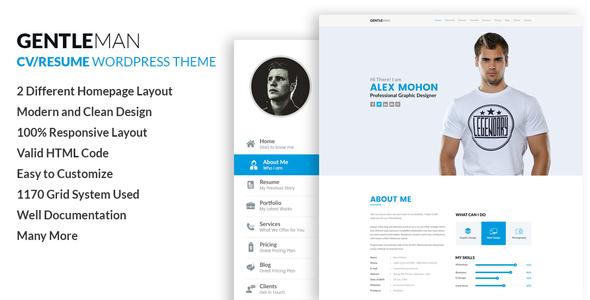 popular premium WordPress themes
