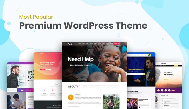 popular premium WordPress themes